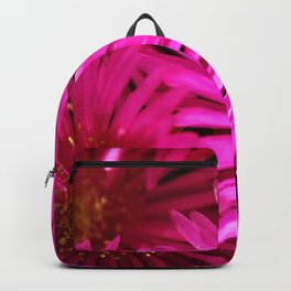 Ice Plant Pink Cactus Flowers Backpack
