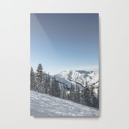View From Alta Metal Print