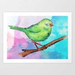Watercolor bird Art Print