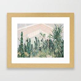 Cactus garden (2) Framed Art Print