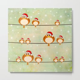 christmas birds Metal Print