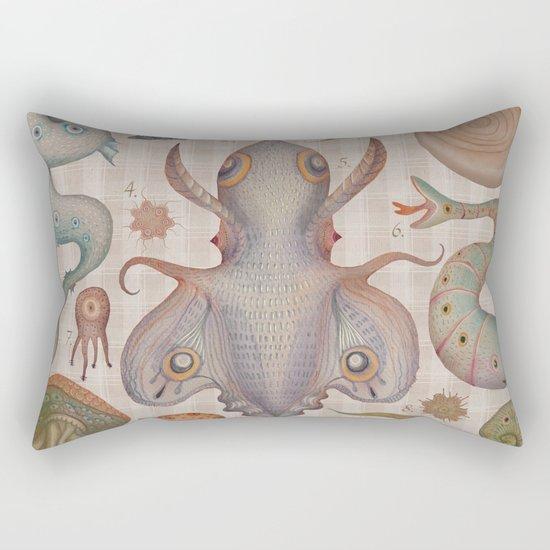 Marine Curiosities III Rectangular Pillow