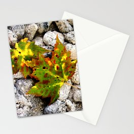Leaves in Gray Stationery Cards