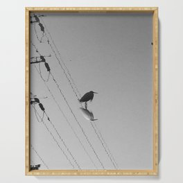 Photography: The water reflection of lonely bird. Serving Tray