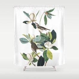 Warbling flycatcher, Birds of America, Audubon Plate 118 Shower Curtain
