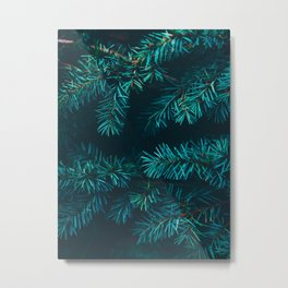 Pine Tree Close Up Neon Green Colorful Leaves Against A Black Background Metal Print