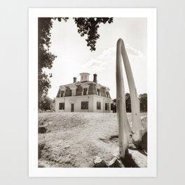 captains house photography Art Print