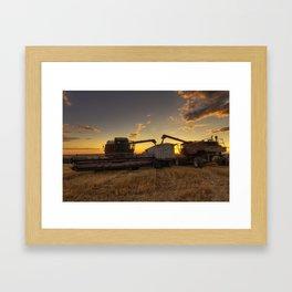 Golden Hour Grain Framed Art Print