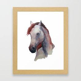 Horse #6 Framed Art Print