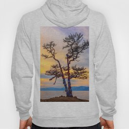 Baikal pine Hoody