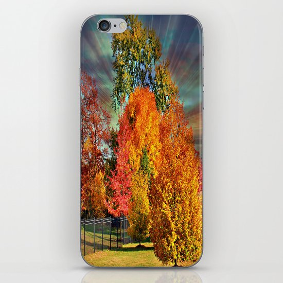 Autumn Splendor iPhone & iPod Skin