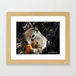 Mm Cheezy Framed Art Print
