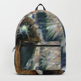 Hawk Eyes Backpack