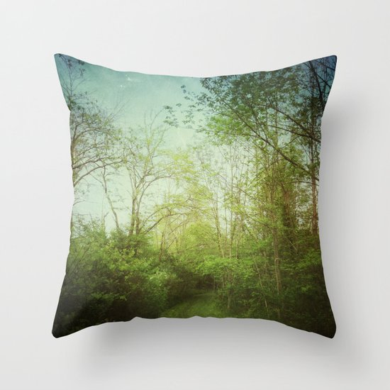Follow Your Life Path Throw Pillow
