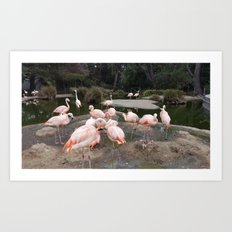 Flamingo Fling Art Print