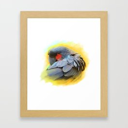 Black Palm Cockatoo realistic painting Framed Art Print