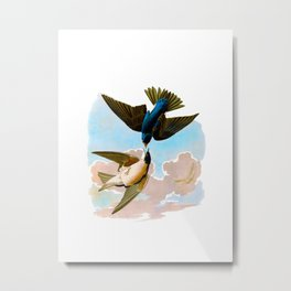 White-bellied Swallow Bird Metal Print