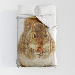 Squirrel with an Acorn Comforters