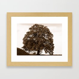 Majestic Tree - Sepia Framed Art Print