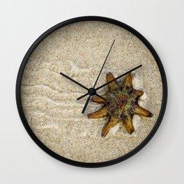 Starfish on the Move Wall Clock