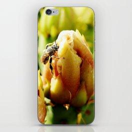 Open, Open, Open iPhone Skin