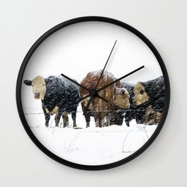 Cattle in a Snowstorm in SouthWest Michigan Wall Clock