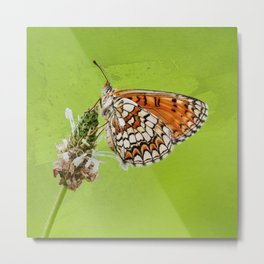 Butterfly watercolor Metal Print