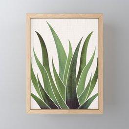 Vintage Agave / Desert Succulent Framed Mini Art Print