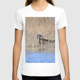 Watercolor Otter 06, Janes Island, Maryland T-shirt