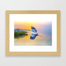 Great Blue Heron at Sunset Framed Art Print