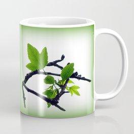 Sweetgum Tree Leaf Sprouts Coffee Mug