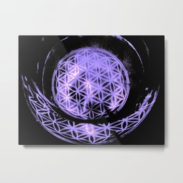 WaterLife Metal Print