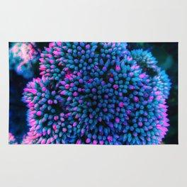 Pink-Tipped Seedum Rug