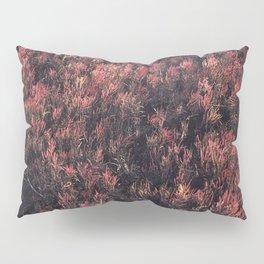Glasswort Pillow Sham
