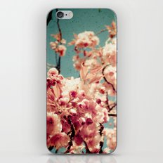 Sweet Blossoms iPhone & iPod Skin