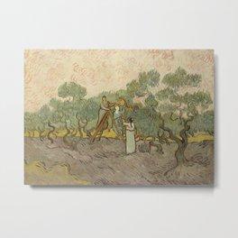 Women Picking Olives Metal Print