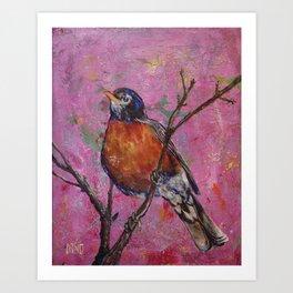 American Robin #6 Art Print