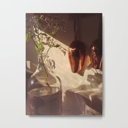 Coppery Metal Print
