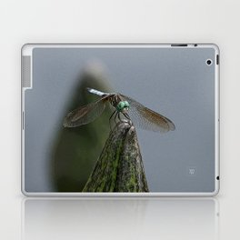Launch Pad Laptop & iPad Skin