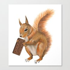 Super squirrel. Canvas Print