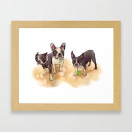 Bubba, Spanky & Figgy Framed Art Print