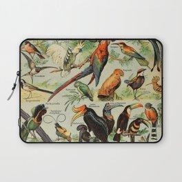 Adolphe Millot- Parrots Laptop Sleeve