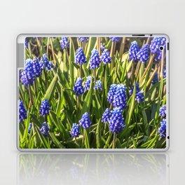 Grape hyacinths muscari Laptop & iPad Skin