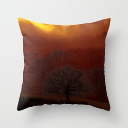 Fog 34 Throw Pillow