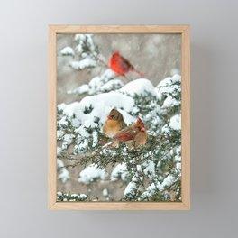 After the Snow Storm: Three Cardinals Framed Mini Art Print
