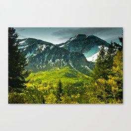 Scenic Mountain Canvas Print