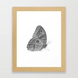 Owl Butterfly Framed Art Print