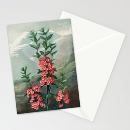 Robert John Thornton - The Narrow–Leaved Kalmia Stationery Cards