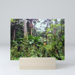 Singapore Botanical Garden 1 Mini Art Print