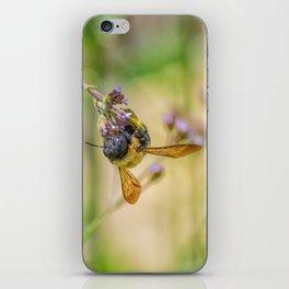 Working Bee iPhone Skin